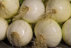Onions for sale Kelowna Farmers Market - Bruce Kemp
