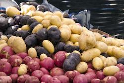 Spuds Kelowna Farmers-market