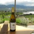 Poplar Grove wine and view