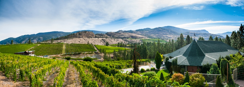 Okanagan Falls Wine Touring Guide