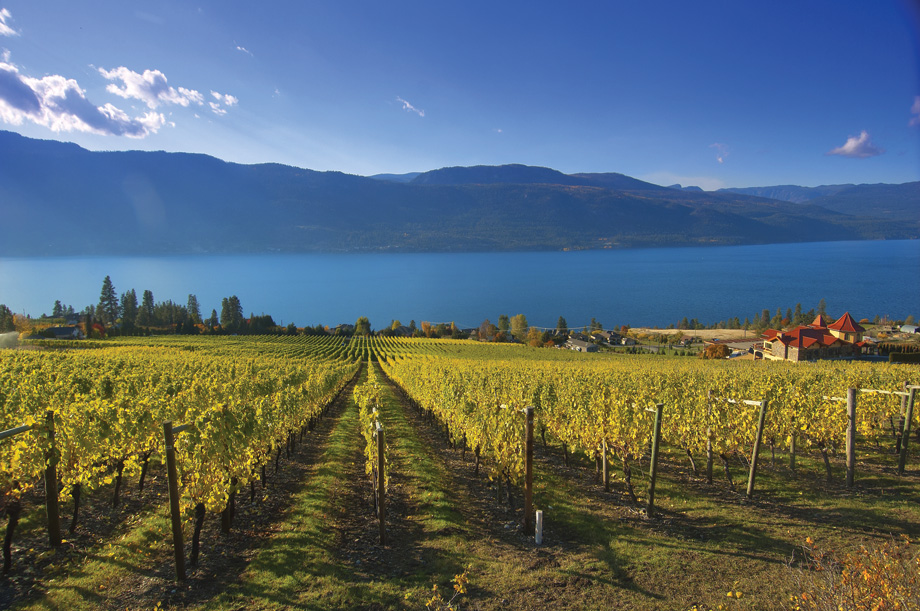 USA Today Readers Choose Okanagan Valley as Top Wine Region