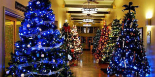 Winter in Wine Country: Osoyoos hosts Festival of Trees