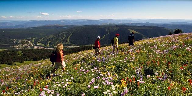Sun Peaks hosts Canada's Alpine Blossom Festival