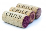 Vina Concha y Toro: Joint venture expands Chilean wine distribution in Canada