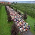 kelowna-wine-marathon_opt