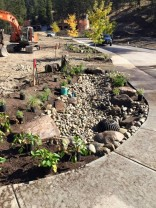 Kelowna first Green Street welcomes visitors this Saturday