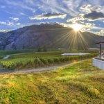 Liquidity Wines wins prestigious Chardonnay du Monde prize in France