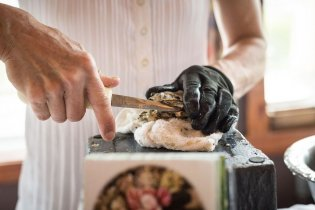 Oysters_shucking