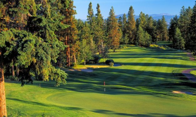 Gallagher's Canyon Golf and Country Club hosting Mackenzie Tour