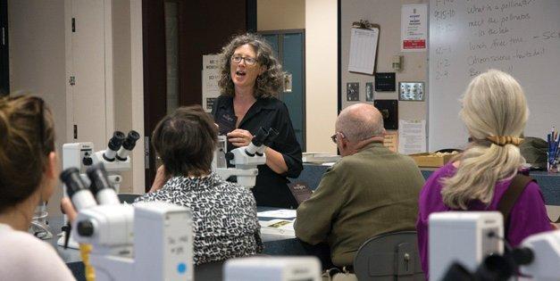 Okanagan educator spearheads program to save bees