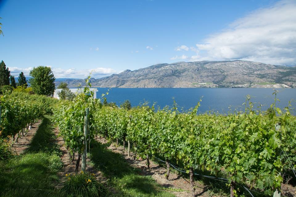Comedy Duo takes the stage at Summerland winery