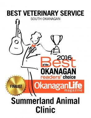 thumbnail of 2016-best-of-the-okanagan-petcare-26