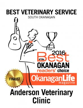 thumbnail of 2016-best-of-the-okanagan-petcare-27