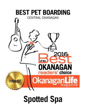 thumbnail of 2016-best-of-the-okanagan-petcare-3