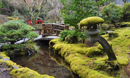 The Butchart Gardens bans the bottle for World Water Day