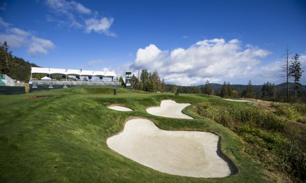 Wine and golf: taking it to the pros
