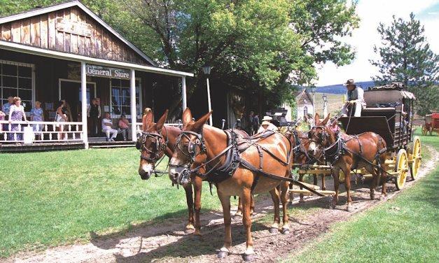 O'Keefe Ranch 150 Birthday Celebration @ Historic O'Keefe Ranch | Vernon | British Columbia | Canada