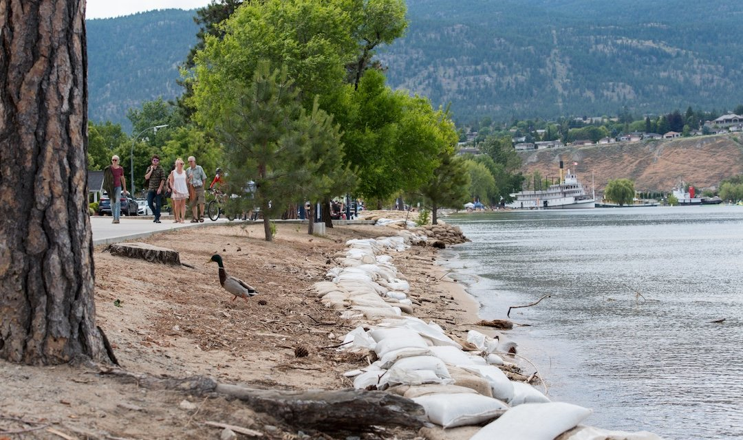 Slow but steady: Okanagan Lake levels continue to decline