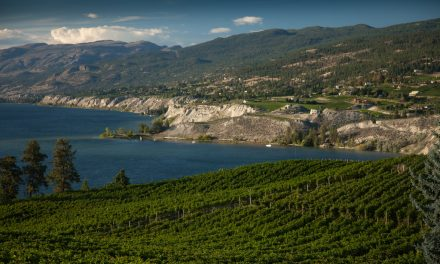 WestJet increases service from Kelowna this winter