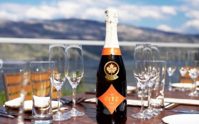 Fizz-tastic: The many expressions of the grapes of Champagne
