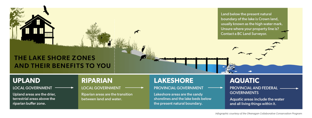 The-lake-shore-zones-and-their-benefits-to-you